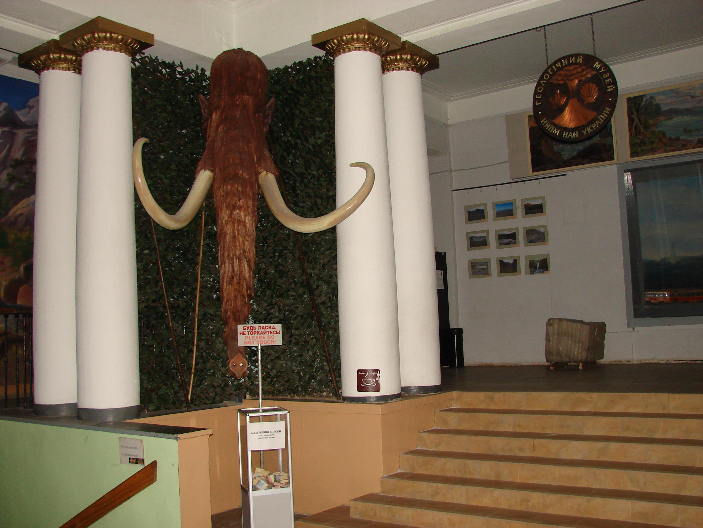 В холі музею